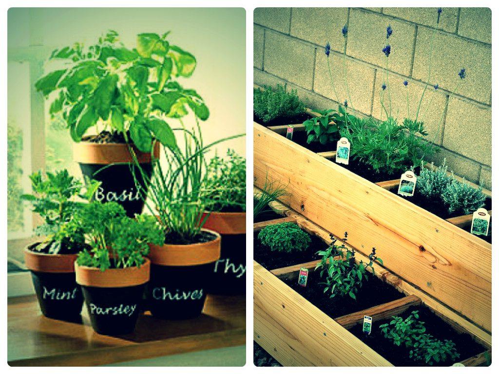 Garden design garden design with garden florists gourmet potted garden design with index of newswpcontentuploads with lantana plant workwithnaturefo