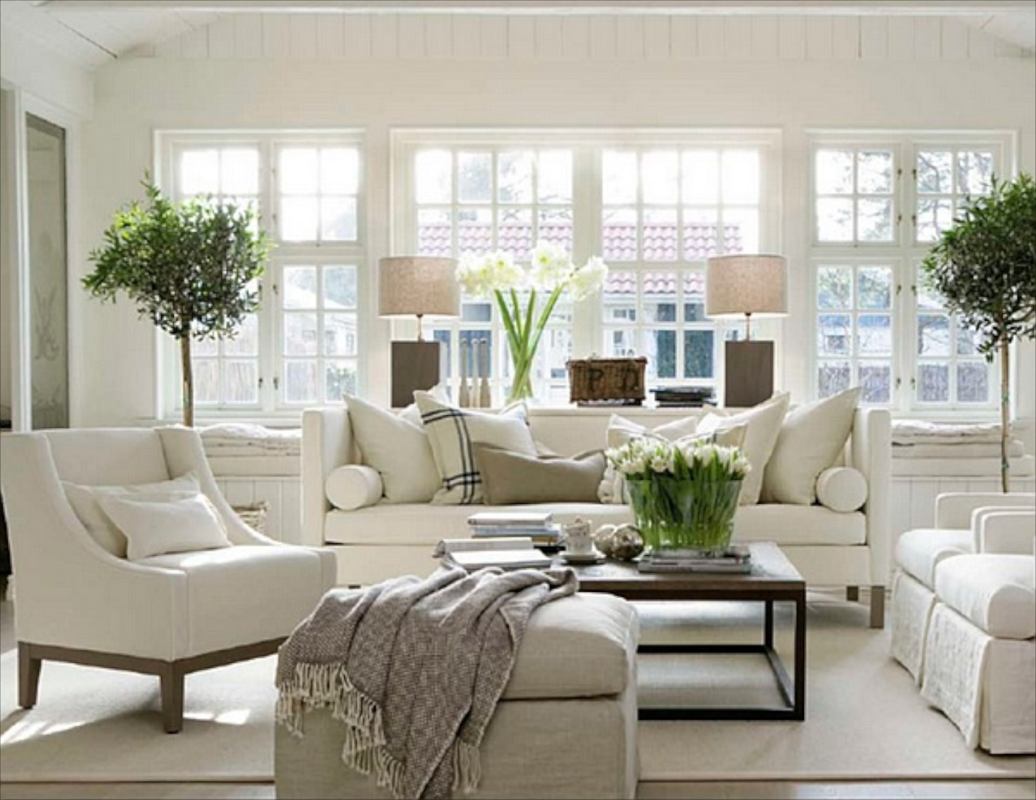Living Room Decor Plants Captivating Traditional Part 67