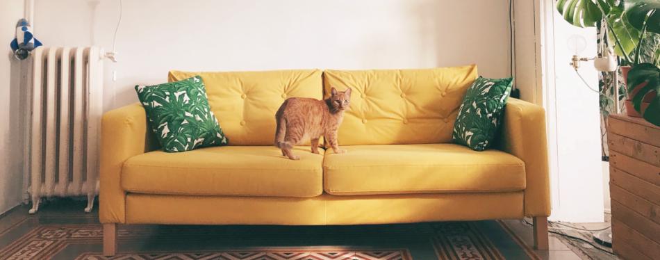 Karlstad IKEA Sofa with Comfort Works sofa cover
