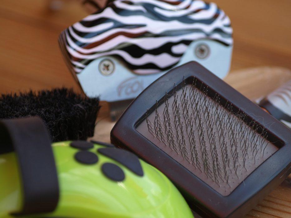 Pet's Hair Brush