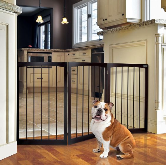 Dog by Dining Area Safety Gate