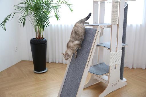 cat proof cat tree