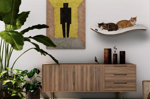 cat proof wall shelf and lounge