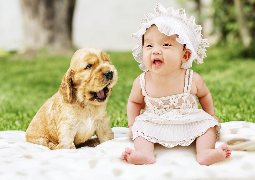 When Should You Introduce Your Baby to Your Pets
