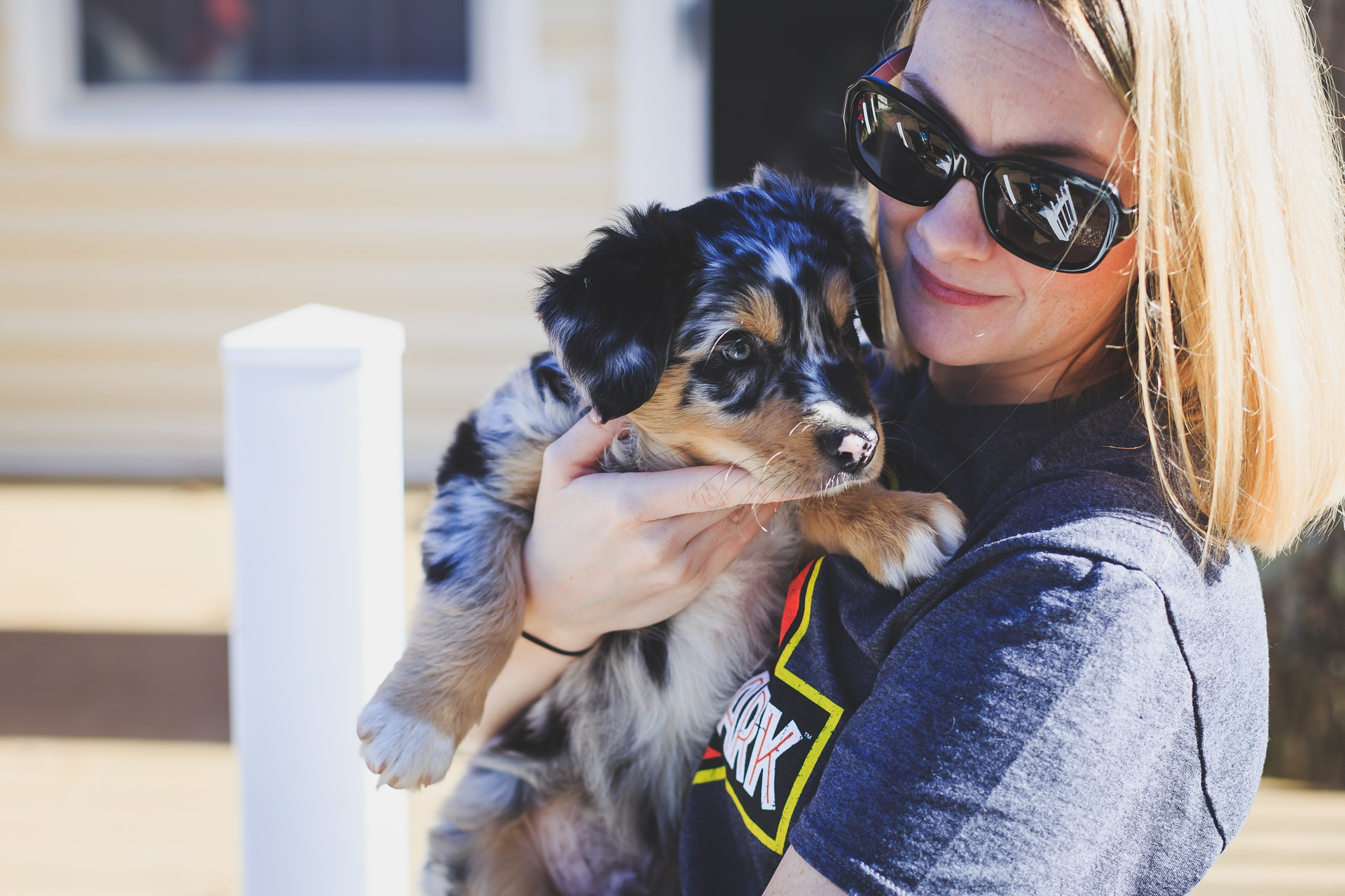 Your First 30 Days With A New Puppy: What To Expect