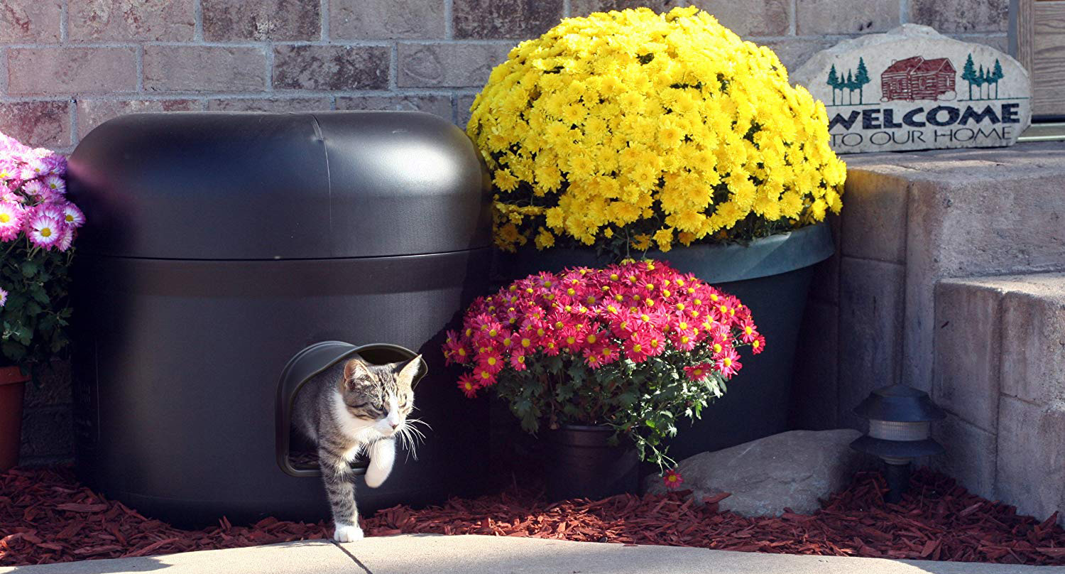What are the best cat houses? Find out in this blog post