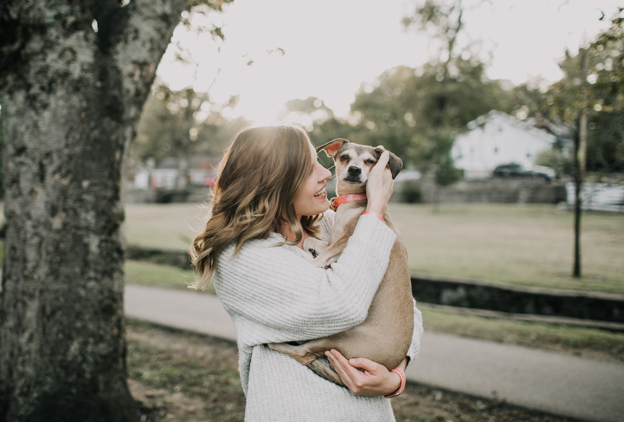show your dog how much you love him