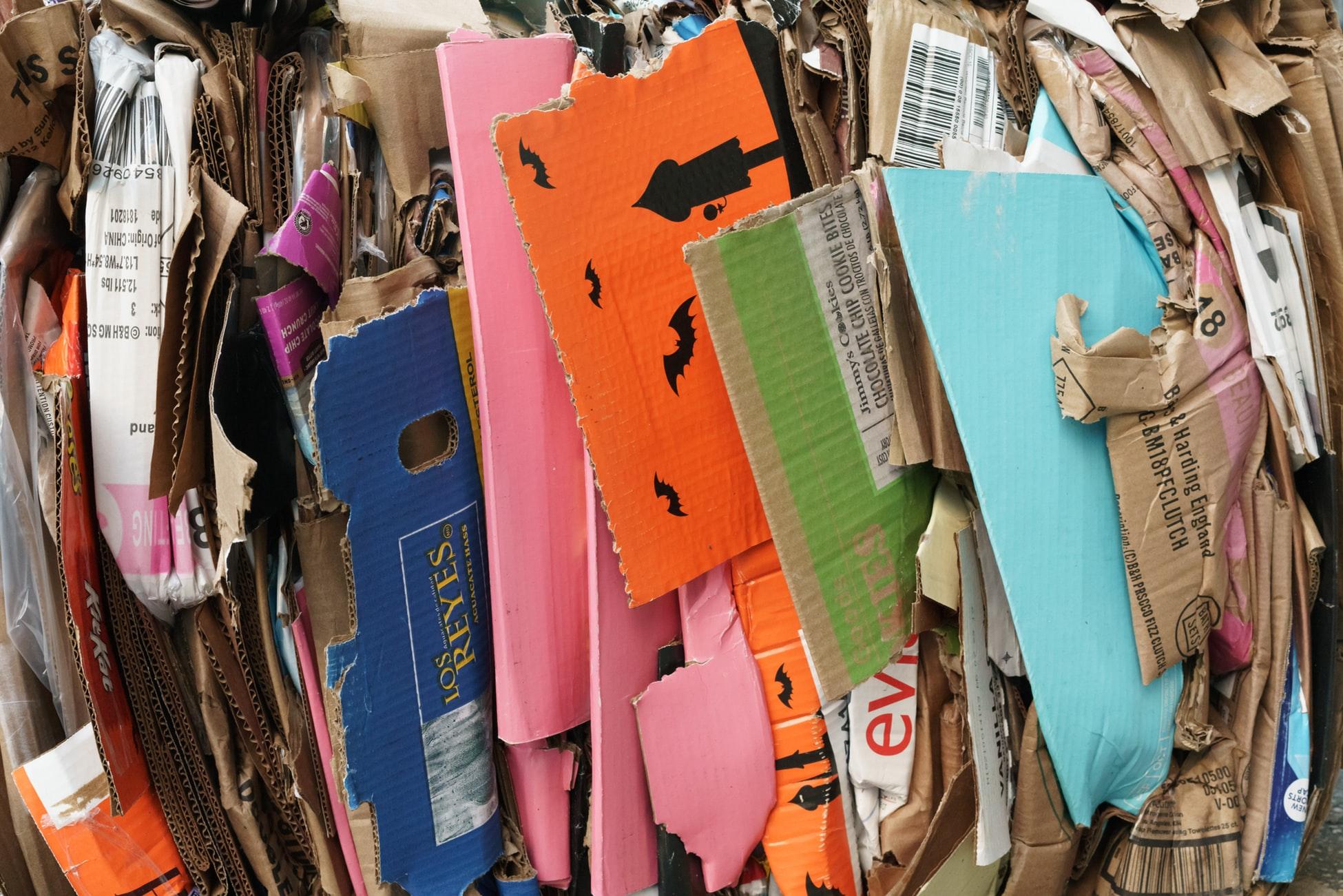 地球にもっと優しく 家庭でプラスチックごみを減らす8つの方法