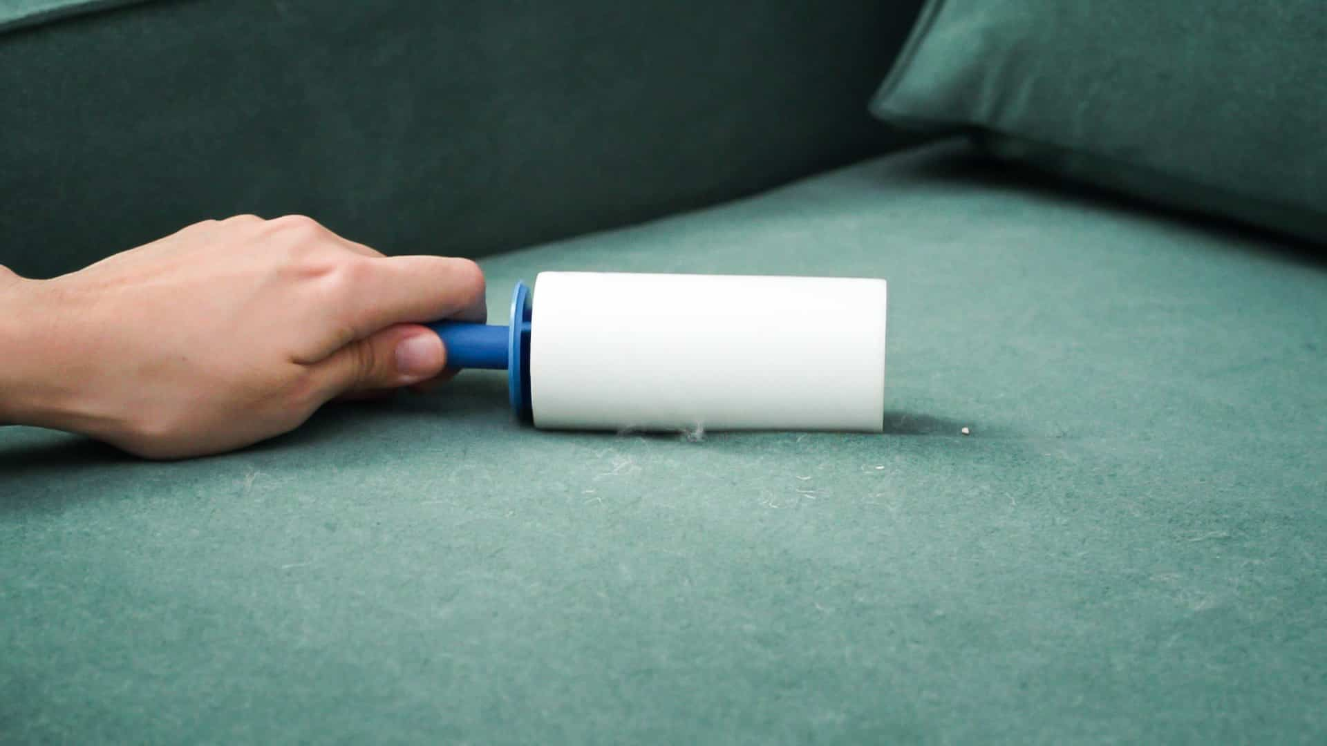 lint roller cleaning fur off sofa