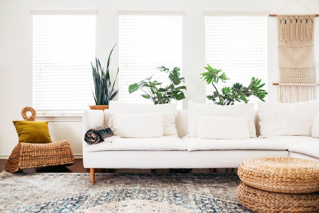 観葉植物がより映える白いソファのコーディネートもおすすめです。