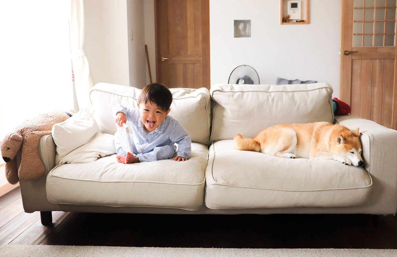 How to grow a sofa with your family