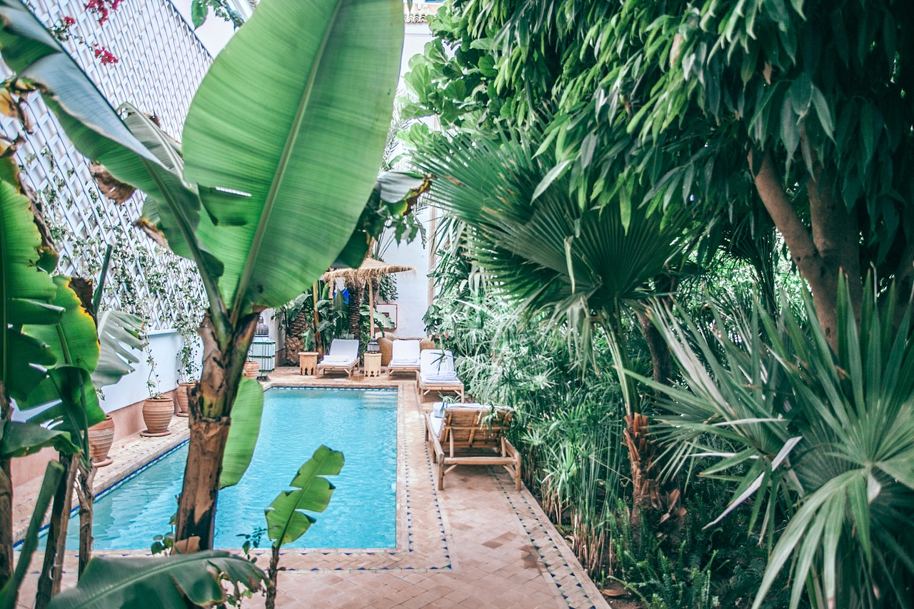Turn your home into a tropical resort this summer