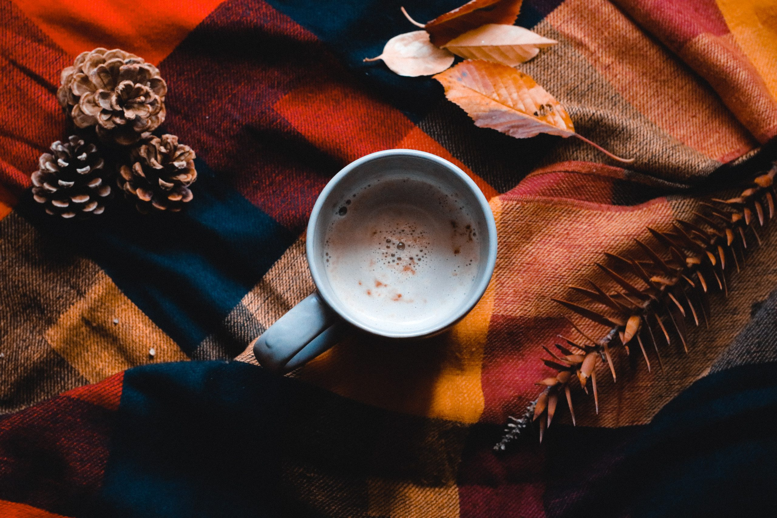 Fall Tartan Blanket With Coffee And Fall Leaves