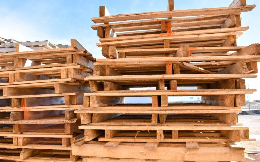 Pallets de madera bricolaje sofa